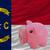флаг · Северная · Каролина · подробность · ветер - Сток-фото © vepar5