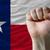 Техас · флаг · синий · путешествия · звездой · ветер - Сток-фото © vepar5