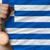 ギリシャ語 · サッカー · 草 · ギリシャ · フラグ - ストックフォト © vepar5