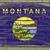 grunge · bayrak · Montana · tuğla · duvar · boyalı · amerikan - stok fotoğraf © vepar5