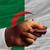 zakupu · karty · kredytowej · Algieria · człowiek · na · zewnątrz - zdjęcia stock © vepar5