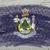 zászló · Maine · grunge · fából · készült · textúra · precíz - stock fotó © vepar5