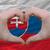 Eslováquia · assinar · negócio · metal · espaço - foto stock © vepar5
