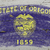 vlag · Oregon · grunge · houten · textuur · nauwkeurig - stockfoto © vepar5
