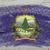 bandera · Vermont · grunge · textura · preciso - foto stock © vepar5