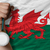 silver medal for sport and national flag of wales stock photo © vepar5