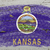bandera · Kansas · grunge · textura · preciso - foto stock © vepar5