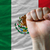 Hard fist in front of mexico flag symbolizing power stock photo © vepar5