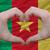 Камерун · стране · флаг · карта · форма · текста - Сток-фото © vepar5