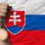 bronze medal for sport and national flag of slovakia stock photo © vepar5