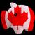 Kanada · ceny · monet · biały · działalności - zdjęcia stock © vepar5