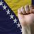 bandera · Bosnia · Herzegovina · aislado · blanco - foto stock © vepar5