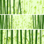 Horizontal banner with many bamboos. stock photo © Vertyr