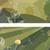 horizontal · ilustração · flores · dandelion · vetor · abstrato - foto stock © Vertyr