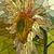 bloem · Geel · zonnebloem · vector · verticaal · mozaiek - stockfoto © Vertyr