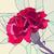 fiore · rosso · garofano · vettore · mosaico - foto d'archivio © Vertyr