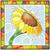 flor · girassol · sol · luz · vidro - foto stock © Vertyr