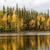boot · wateroppervlak · water · zee · blad - stockfoto © vetdoctor