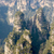 bos · China · park · boom · landschap · wereld - stockfoto © vichie81