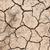 dry soil texture background stock photo © vinnstock
