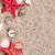 tenger · kagylók · kettő · piros · tengeri · csillag · iránytű - stock fotó © viperfzk