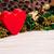 saint · valentin · vert · brun · séché · plantes · fleurs - photo stock © viperfzk
