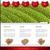 internet · blog · cor · caixa · eps · arquivo - foto stock © vipervxw