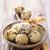 quail eggs stock photo © vitalina_rybakova