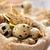 fresh quail eggs stock photo © vitalina_rybakova