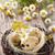 гнезда · яйца · веточка · Гранж · синий · пространстве - Сток-фото © vitalina_rybakova