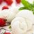 mozzarella · tomates · cherry · frescos · albahaca · ingredientes - foto stock © vitalina_rybakova