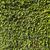 green leaves wall background stock photo © vizualni