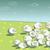 群れ · 羊 · 漫画 · 実例 · 家畜 - ストックフォト © vook