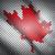 bandeira · Canadá · folha · pintura · branco · cultura - foto stock © vtorous