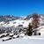 panorama · ski · Resort · village · la · ciel - photo stock © vwalakte