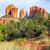 zonsondergang · kathedraal · rock · schilderachtig · afbeelding · Arizona - stockfoto © vwalakte