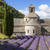 abbey of senanque and lavender field stock photo © vwalakte