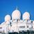 мнение · известный · Абу-Даби · мечети · ночь · зеленый - Сток-фото © vwalakte