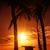Miami · égbolt · Florida · nyár · naplemente · panoráma - stock fotó © vwalakte