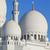 Abu · Dabi · cami · panoramik · görmek · ünlü · gece - stok fotoğraf © vwalakte