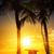 синий · Майами · Флорида · закат · красочный - Сток-фото © vwalakte