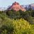 kaya · oluşumu · kanyon · iz · güney · Grand · Canyon · manzara - stok fotoğraf © vwalakte