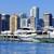 pálmafák · sziluett · Miami · Florida · USA · üzlet - stock fotó © vwalakte