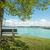 lake chiemsee with tree and bench stock photo © w20er