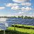 solar panel field stock photo © w20er