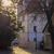 árvore · backlight · céu · sol · inverno · nuvem - foto stock © w20er