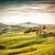 de · oliva · árboles · Toscana · Italia · puesta · de · sol · sol - foto stock © w20er