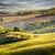 Toskana · manzara · gün · batımı · çiftlik · ev - stok fotoğraf © w20er
