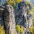 rocks in saxon switzerland germany stock photo © w20er