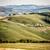 toscana · paisagem · campos · Itália · campo · horizonte - foto stock © w20er